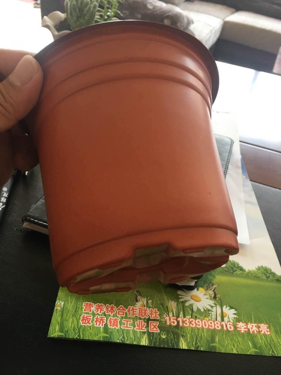 水生植物盆