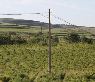贵州电线杆