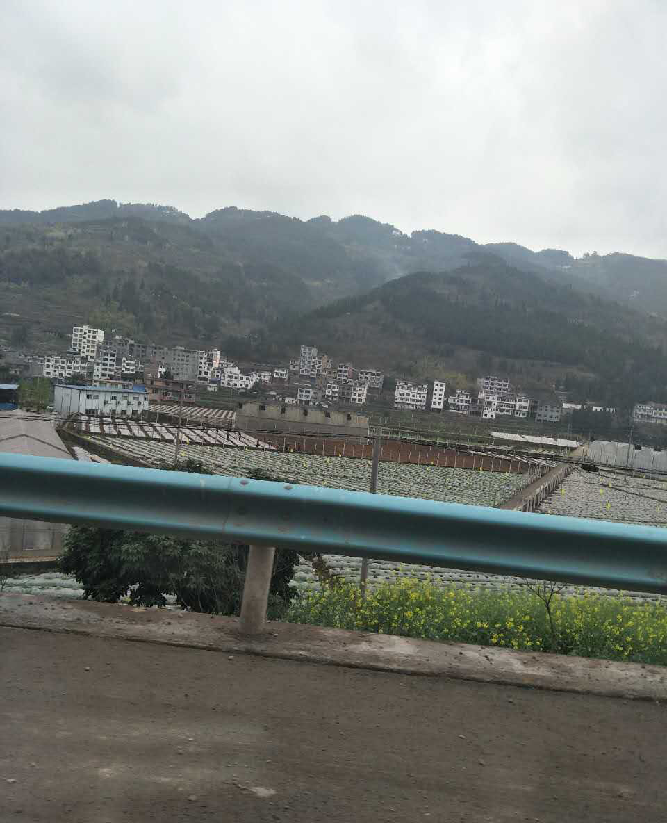 贵州护栏安装维护