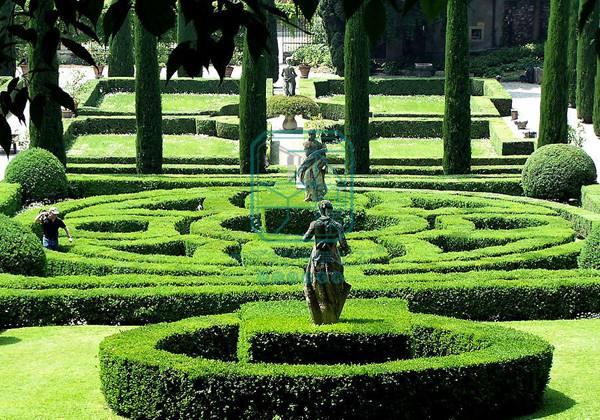 呼和浩特景观绿化