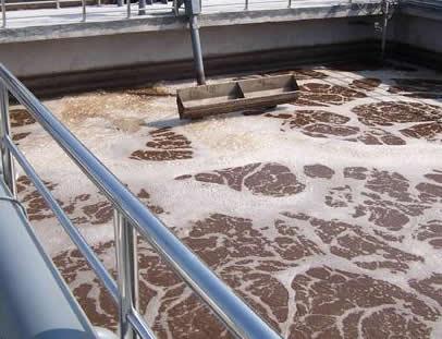 食品加工废水处理