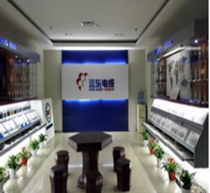 江苏远东电缆销售部