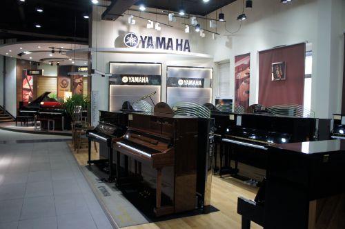 成人鋼琴班