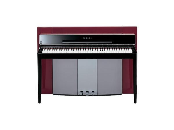成人鋼琴培訓課