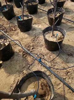 节水灌溉工程