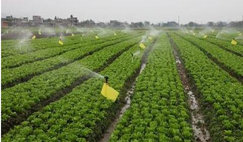 水肥一体化实施方案