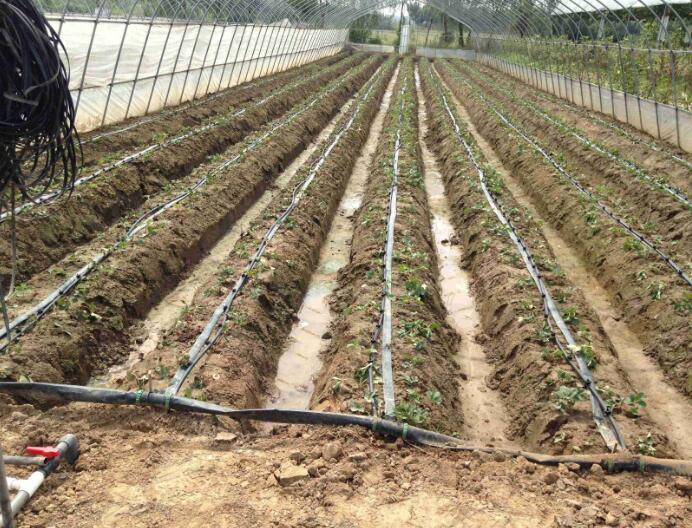 水肥一体化工程