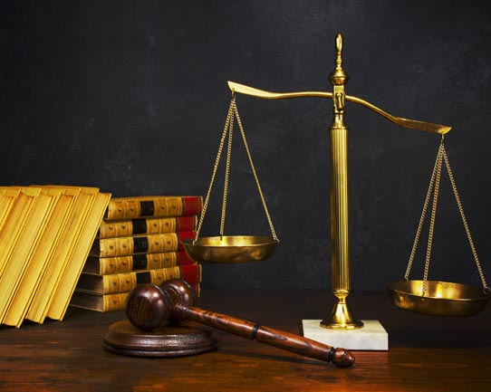 专业律师服务