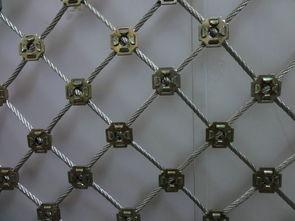 环形主动网