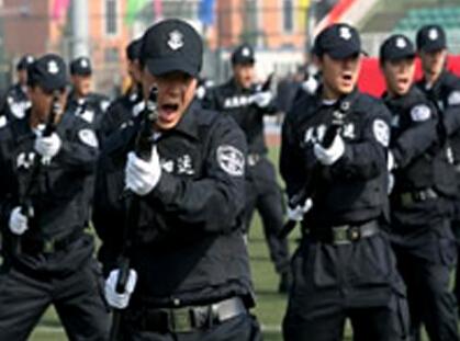 天津好的保安公司