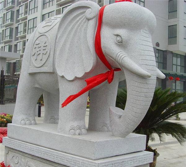 手机版大象
