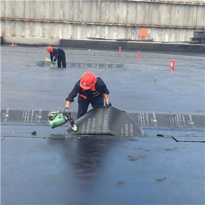 专业防水补漏专家