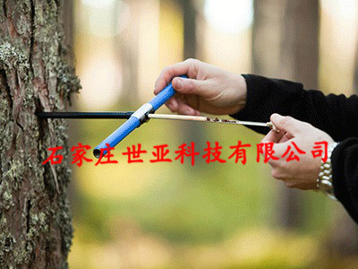 瑞典树木生长锥