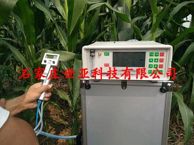 植物呼吸作用测定仪