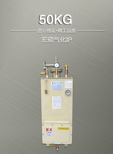 50公斤气化炉