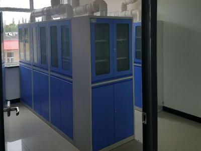 实验室全钢排风药品柜