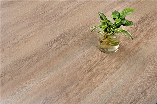 木塑地板板價格