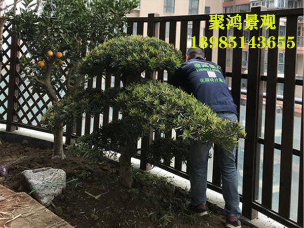 贵州花园设计