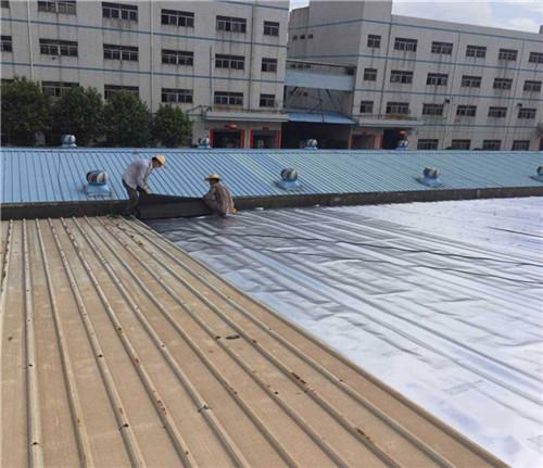 2020年香港历史开奖记录版_厂房防水多少钱
