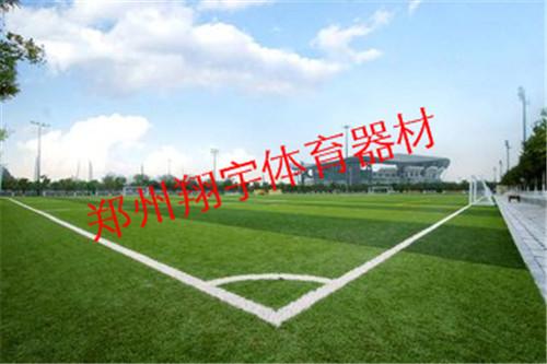 学校运动场人造草坪