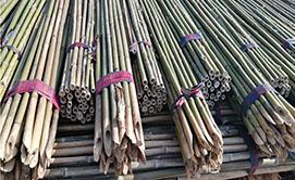 园林竹竿厂家