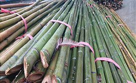 农用竹竿厂家