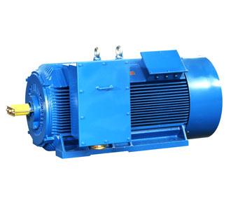 标准型高压电动机(IP54/IP55)