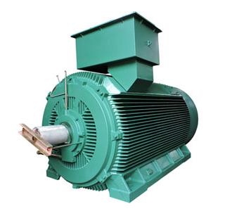 扩功率高压电动机(IP54/IP55)