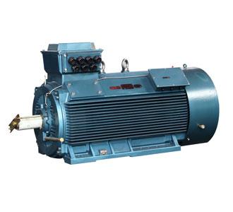 低压大功率电动机