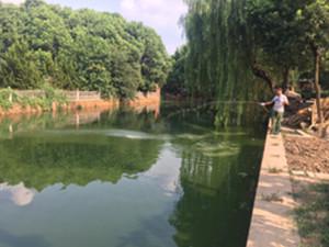 污染水源治理