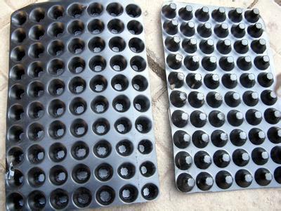 凹凸型排水板