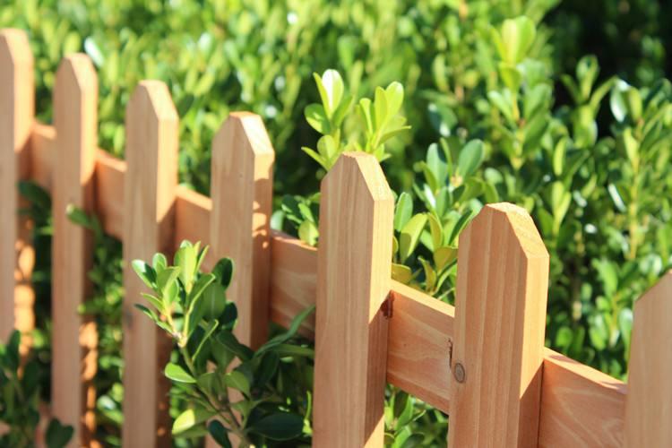 郑州碳化木围栏