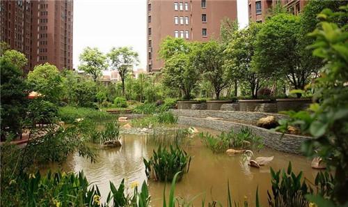 武汉绿化公司有哪些