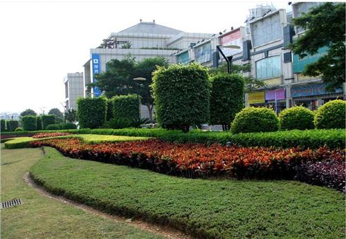 孝感市园林绿化
