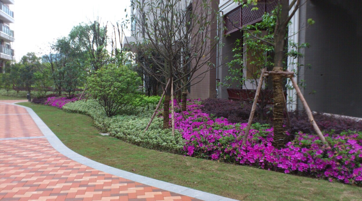 绿化景观工程