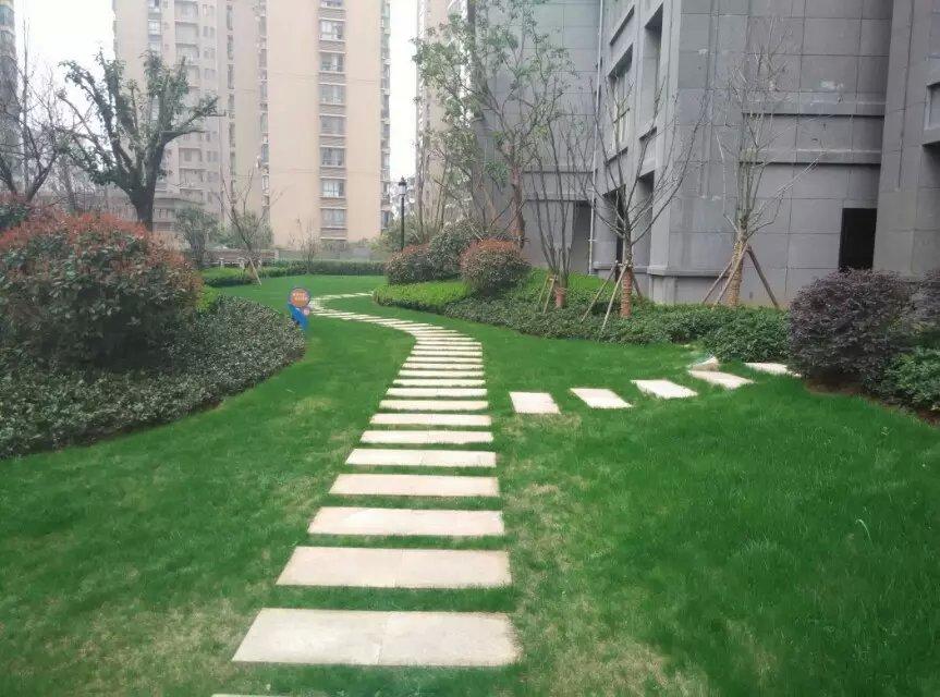 园林工程绿化