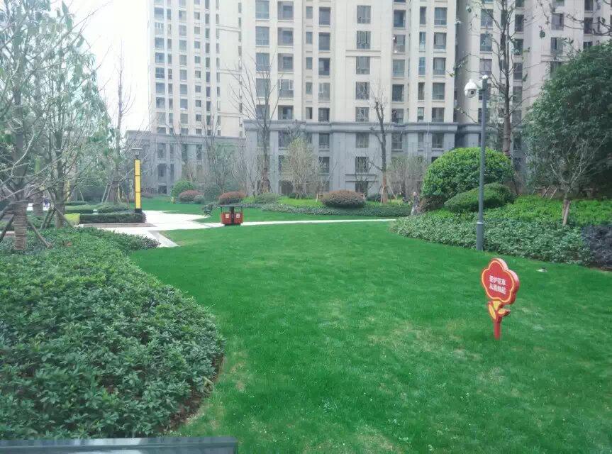 绿化园林工程