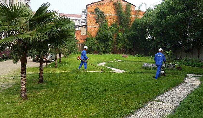 绿化养护工程