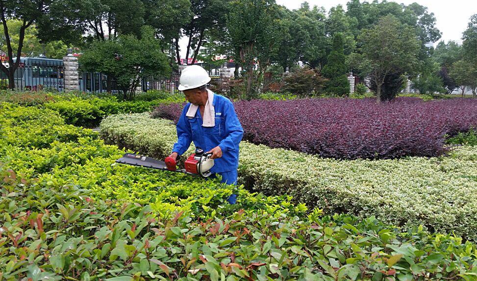 园林绿化工程养护