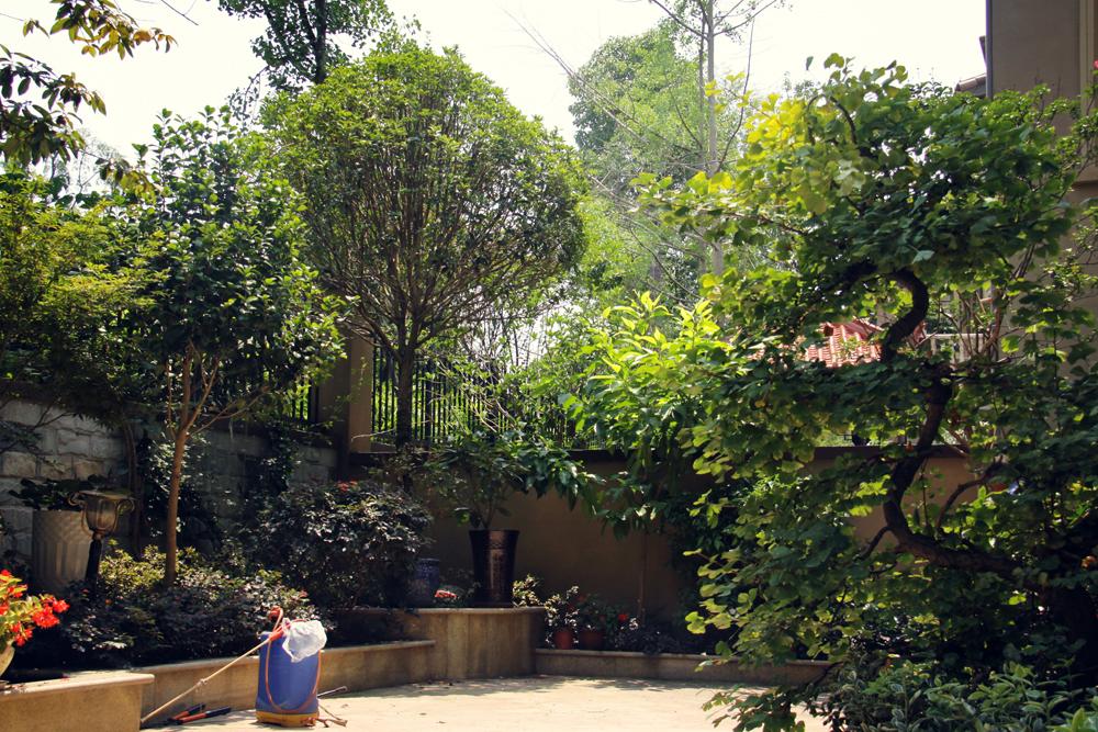 孝昌庭院景观绿化设计
