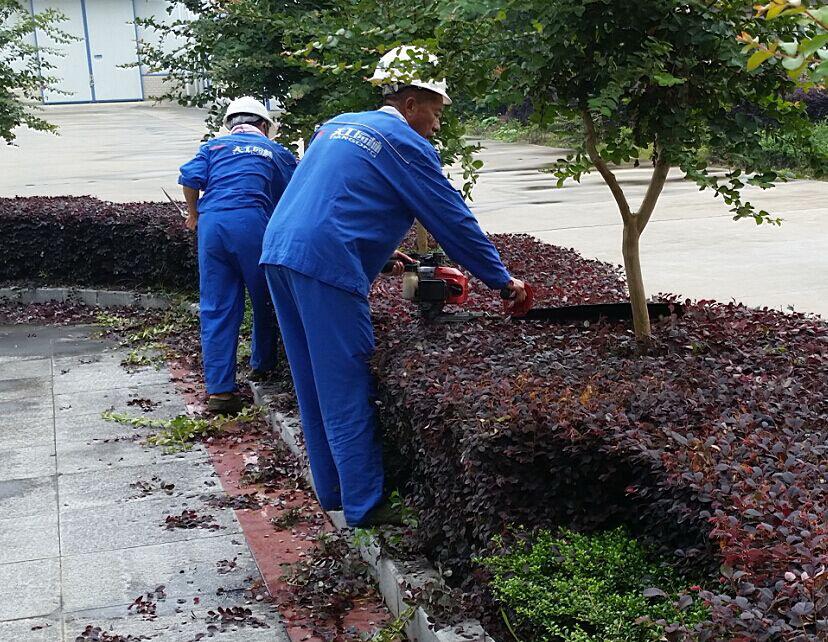 武漢園林綠化養護