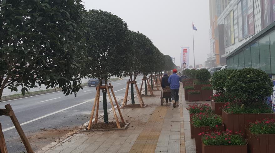 市政园林施工