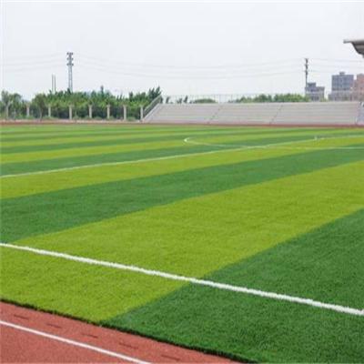 人造草足球场哪家好