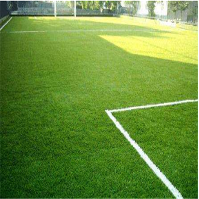 足球場草坪