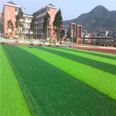 贵州足球场草坪