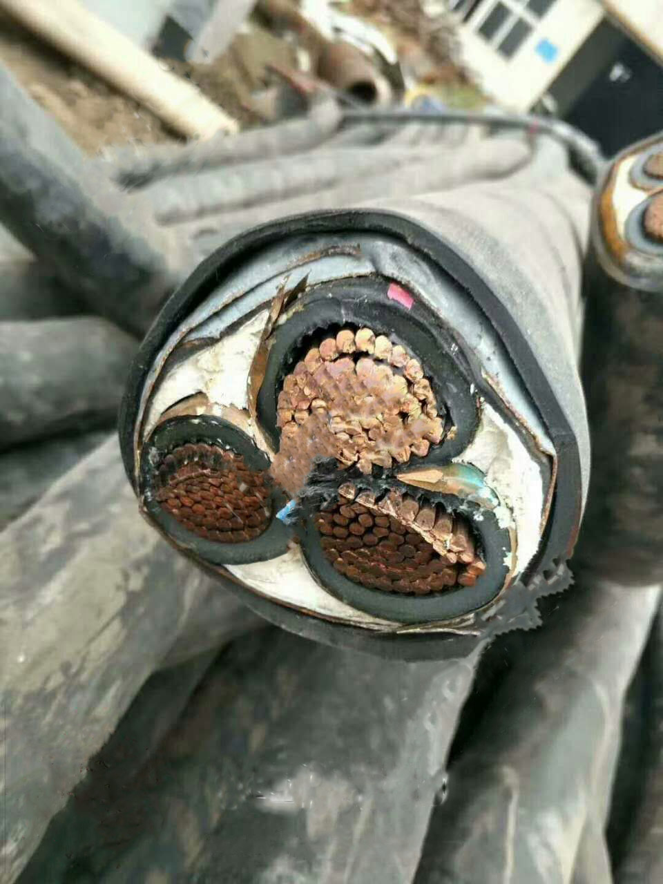 旧线缆回收