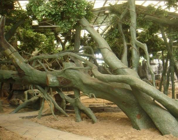 贵州仿真树