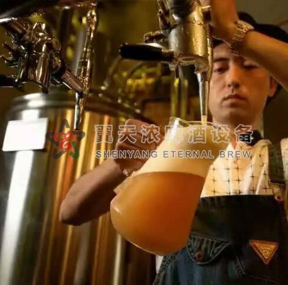 翼天浓啤酒设备