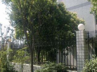 安装电子围栏厂家