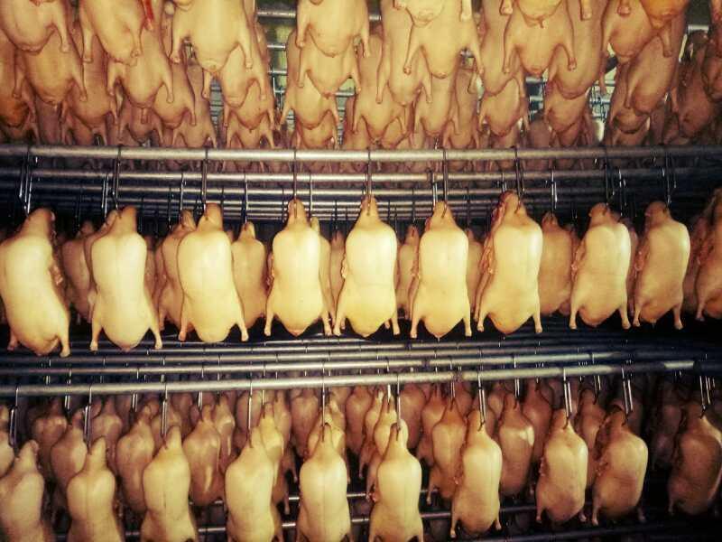 北京烤鸭胚